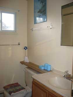 Bathroom_Vanity and Toilet